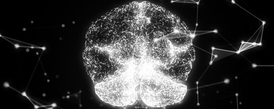 Анализ 2000 мозгов дает ключ к шизофрении и аутизму.