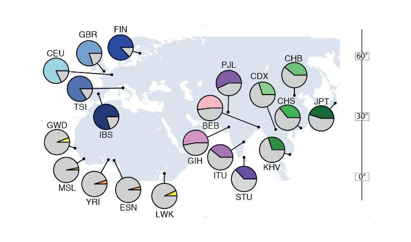 Приспособленность к холоду и мигрень управляются одним геном?