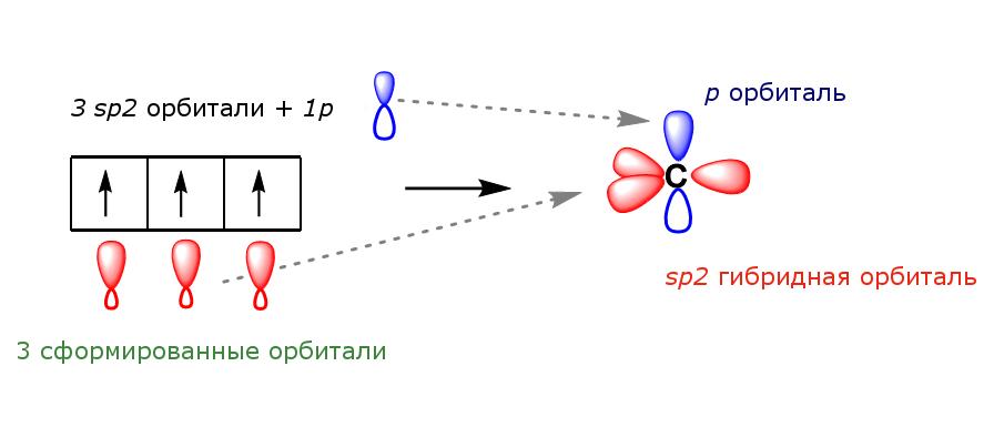 Геометрия sp2 гибридизации